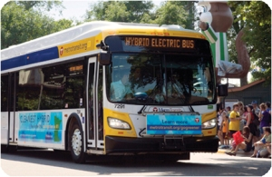 Photo of Metro Transit diesel-electric bus