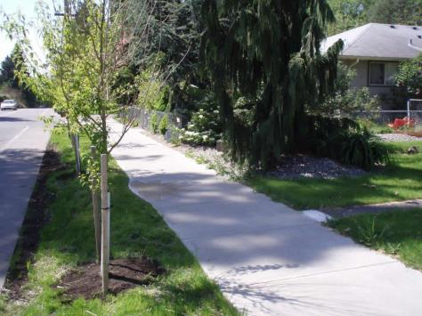A sidewalk that was built using utility tax funds on San Francisco Avenue in Olympia, Washington.