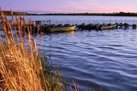 Boats docked on a lake at dawn.
