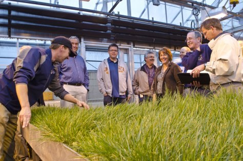 Eric Watkins (third from left) leads a greenhouse tour of grass mixtures.