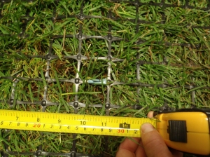 Photo of sod growing through square mesh plastic geogrid material