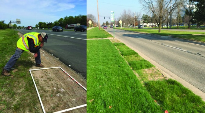 Regional effort tests turfgrass performance in cold climate states