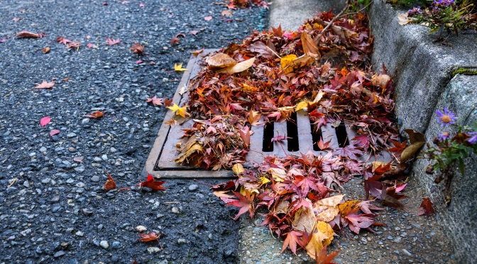 A Long-Term Approach to Green Stormwater Infrastructure